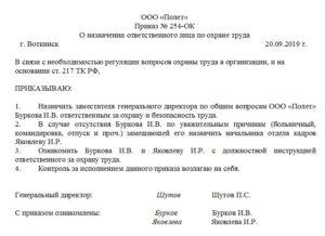 Пример приказа о назначении ответственного лица директора