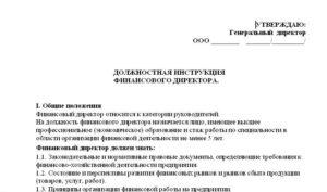 Должностная инструкция генерального директора ООО - образец-2018