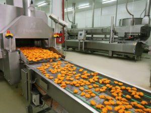 Как открыть цех по производству полуфабрикатов