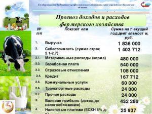 Типовой бизнес-план фермерского хозяйства для гранта