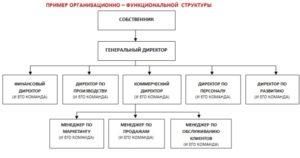 Директор по развитию бизнеса: обязанности должностная инструкция