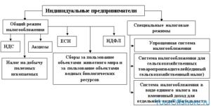 Виды деятельности ИП - как выбрать основной и дополнительные при регистрации, разрешенные и запрещенные