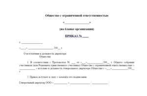 Решение о назначении директора ООО с одним учредителем: образец формы