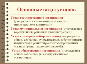 Что такое устав организации (предприятия компании фирмы)