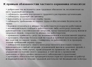 Обязанности охранника: должностная инструкция